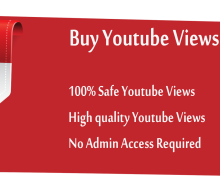 I will send you 1000 Youtube Video Views High-Retention