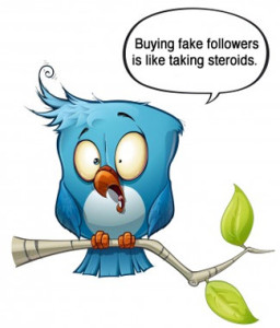 Twitter blue bird - Buying Fake Followers like being on steroids photo