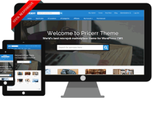 I will give you original latest Pricerr theme (like Fiverr) with updates